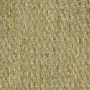 #30 Seagrass